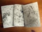 A.O.I. The Odomez Diary